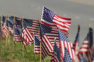 Row of USA Flags 2 (2)